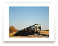 The Grain Train by Brian Collins