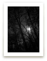 Moonlight by Joel Dameron