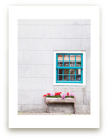 A Little Window by Alexandra Feo