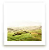 Orcia by Molly Goodman
