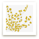 Forsythia by Vanessa Wyler