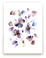 purple flower by Tae Lee