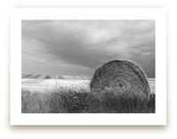 Hay Bales by Elan Alvarez Sherman