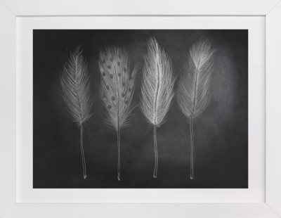 Chalk Feathers Art Print