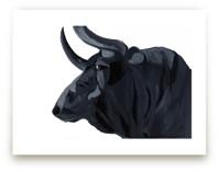 Bull by J. Wink