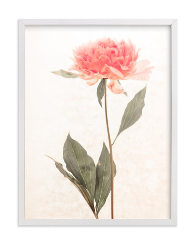 """""""a pink peony standing gracefully"""" - Limited Edition Art Print by Qing Ji in beautiful frame options and a variety of sizes."""