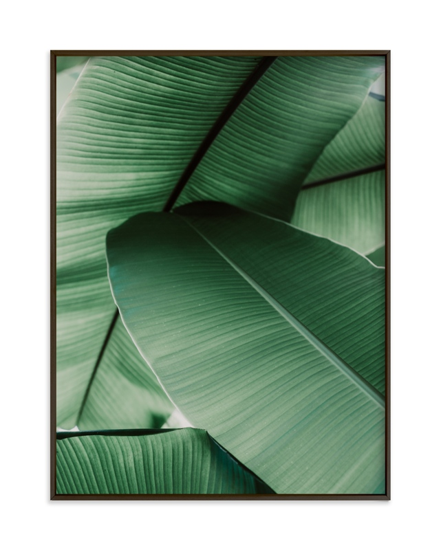 """Tropical Leaves"" - Grownup Open Edition Non-custom Art Print by Alicia Abla in beautiful frame options and a variety of sizes."