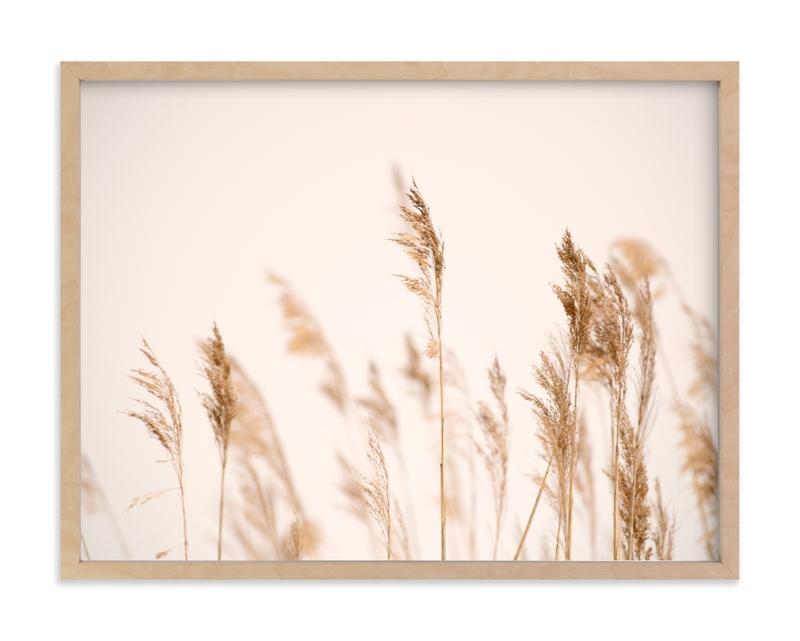 summer weeds Art Print