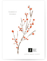 This is a white business holiday card by chocomocacino called namagashi with standard printing on signature in standard.
