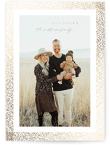 This is a grey foil stamped holiday card by Roopali called Speckled Frame with foil-pressed printing on smooth signature in standard.