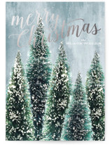 This is a blue foil stamped holiday card by Baumbirdy called Flocked Christmas with foil-pressed printing on signature in standard.