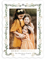 This is a white foil stamped holiday card by Susan Moyal called Holly Vine with foil-pressed printing on smooth signature in standard.