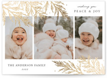 This is a white foil stamped holiday card by Oma N. Ramkhelawan called Holiday Firs with foil-pressed printing on smooth signature in standard.