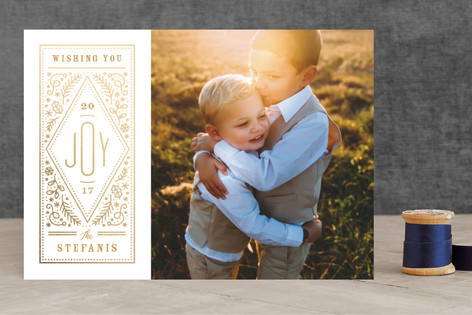 Storied Joy Foil-Pressed Holiday Cards