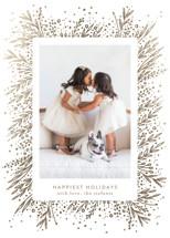 Amazing Frame Foil-Pressed Holiday Cards By Phrosne Ras