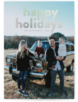 Bright Holidays by Alston Wise