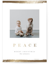 This is a white foil stamped holiday card by Pixel and Hank called Peace Edge with foil-pressed printing on smooth signature in standard.