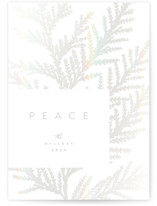 This is a white gloss press holiday card by Owl and Toad called Peaceful Silhouette with gloss-press printing on signature in standard.
