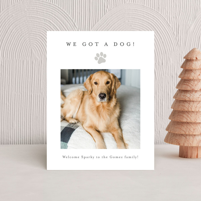 """""""Simple Paw Print"""" - Holiday Insert Cards in Mist by Minted."""