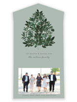 This is a green all in one holiday card by Bonjour Berry called Heaven And Nature with standard printing on value cover in all-in-one.