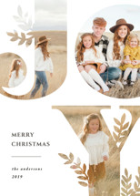 Nature Joy Letterpress Holiday Photo Cards By Playground Prints