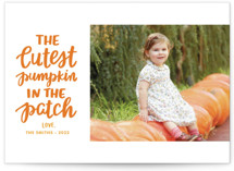 This is a orange halloween party invitations card by Little Print Design called Cutest Pumpkin printing on smooth signature in standard.