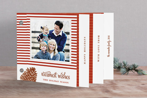 Stripes and Pine Holiday Minibook™ Cards