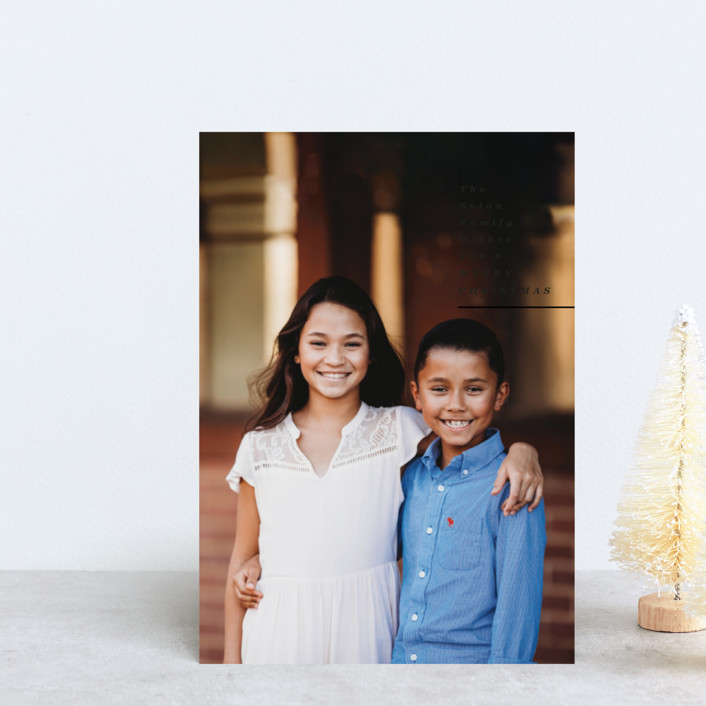 """""""Sending Holiday Wishes"""" - Holiday Petite Cards in Onyx by Owl and Toad."""