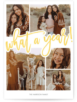 What A Year! Holiday Petite Cards