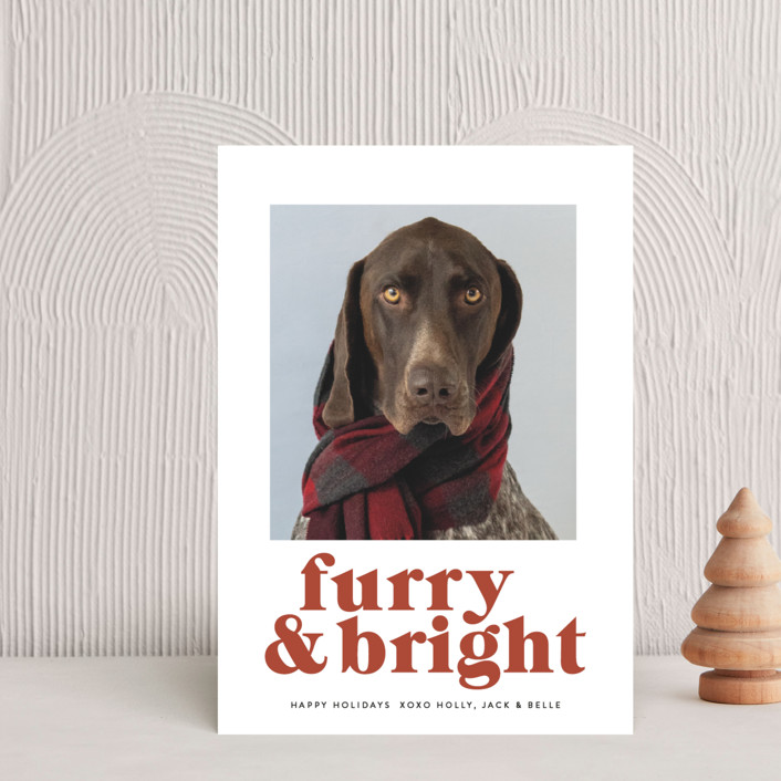 """""""Furry + Bright"""" - Funny Holiday Petite Cards in Rust by Angela Thompson."""