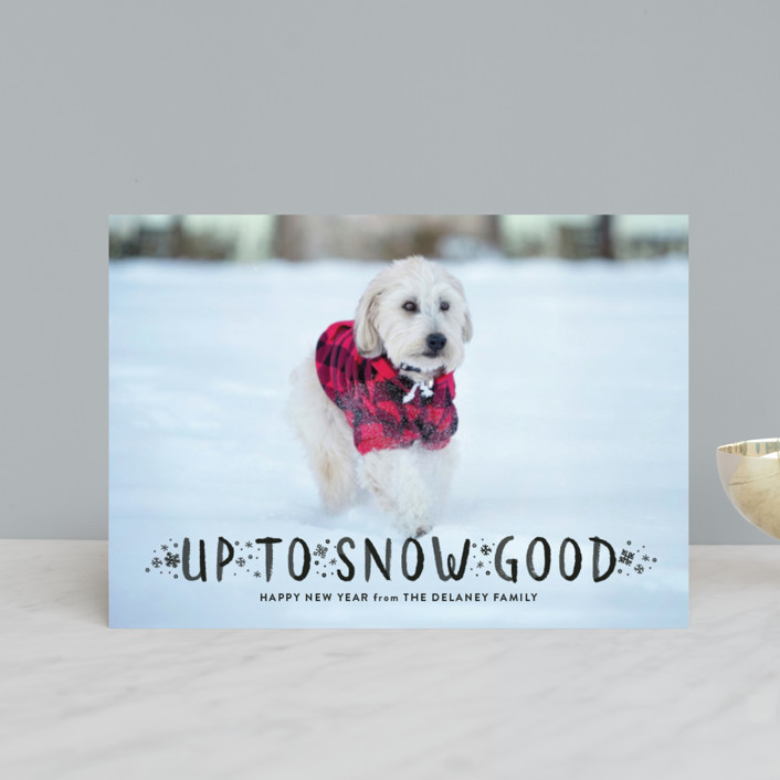 """""""Snow Good"""" - Holiday Petite Cards in Snow by Sarah Brown."""