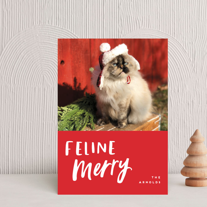 """""""Feline Merry"""" - Funny Holiday Petite Cards in Santa Suit by Chryssi Tsoupanarias."""