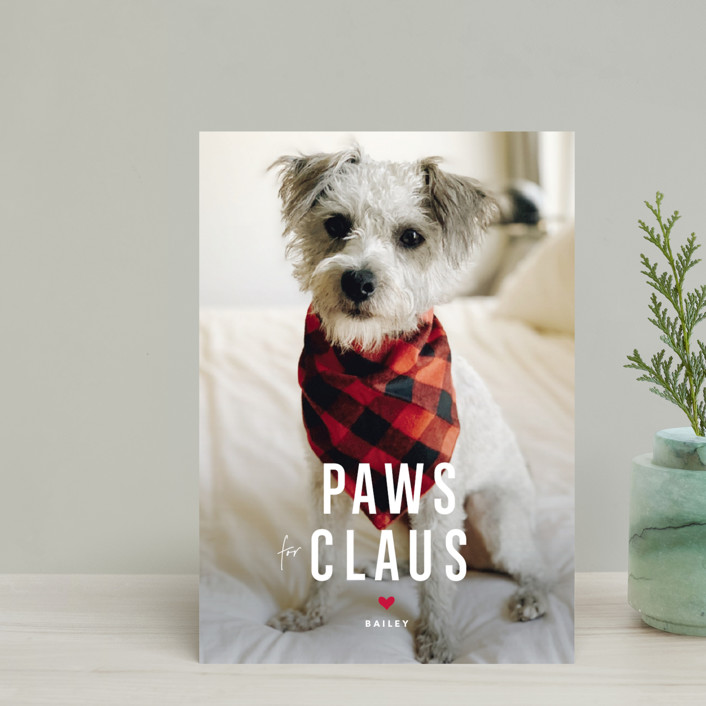 """""""Paws for Claus"""" - Funny Holiday Petite Cards in Snow by Guess What Design Studio."""