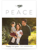 Olive Branch Holiday Petite Cards
