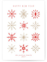 Snowflake Study by Julie Murray