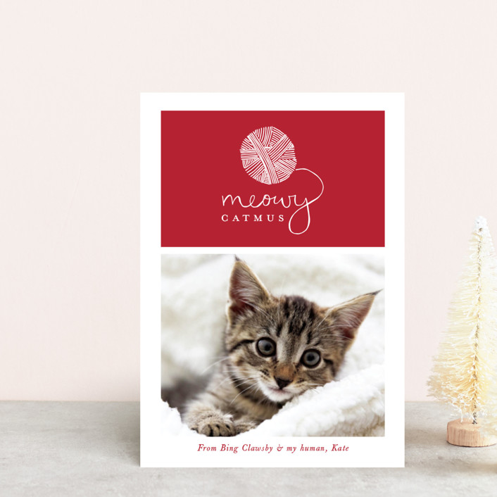 """Meowy Catmus"" - Bohemian Holiday Petite Cards in Ruby by Hudson Meet Rose."