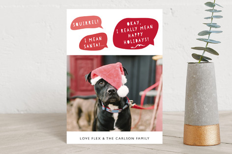 Doggy Greetings Holiday Petite Cards