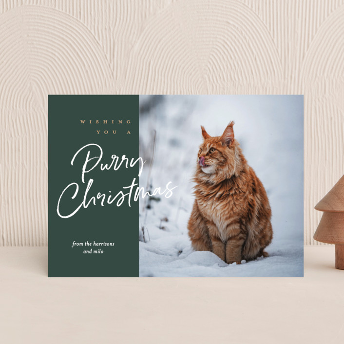 """purry christmas"" - Funny Holiday Petite Cards in Evergreen by Eric Clegg."