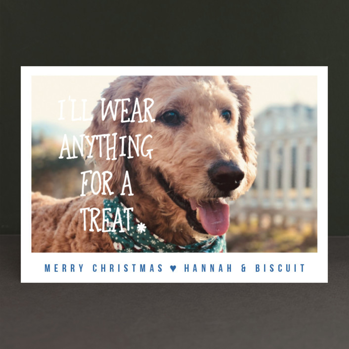 """""""Treats"""" - Holiday Petite Cards in Sky Blue by Kampai Designs."""