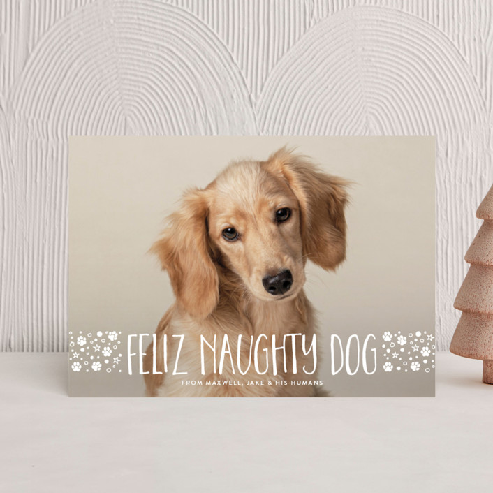 """naughty dog"" - Holiday Petite Cards in Linen by Erin Deegan."