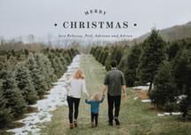 Merrily Framed Holiday Petite Cards By Kasia Labocki