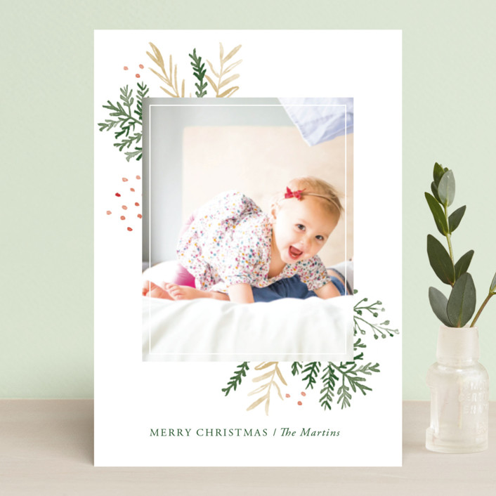 """Wintertide"" - Holiday Petite Cards in Evergreen by Oscar & Emma."