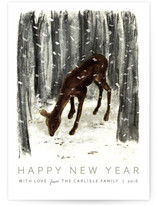Peaceful Deer by Megan Howe