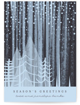 This is a blue non photo holiday card by Baumbirdy called Snowfall with standard printing on signature in standard.