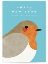 Winter Robin by Catherine Culvenor
