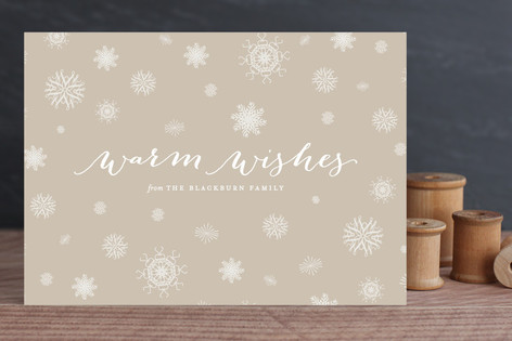 Subtle Snow Holiday Cards