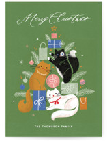 This is a green non photo holiday card by Kristen Smith called Christmas Kitties with standard printing on signature in standard.