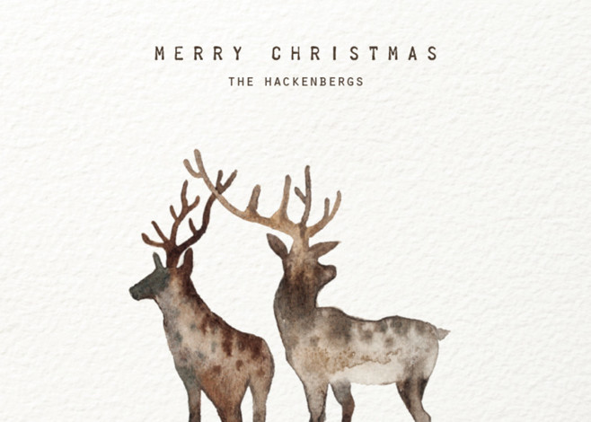 minted merry christmas my deers card