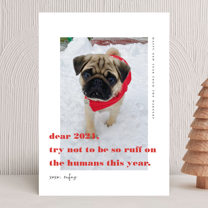 """""""dear 2021"""" - Funny New Year Photo Cards in Cranberry by Frooted Design."""