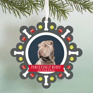 Pawsitively Merry Holiday Ornament Cards